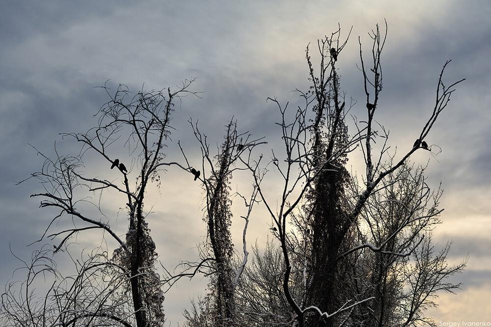 photo-landscape-10.jpg