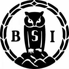 BSI.jpg