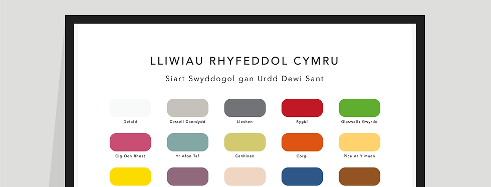 Cymraeg / The Wonderful Colours of Wales Paint Chart Poster / Print in Welsh