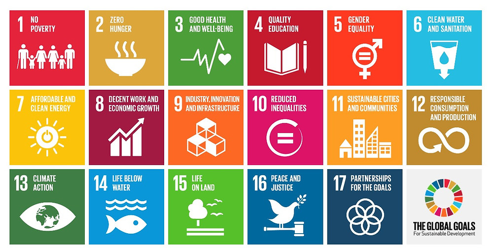 The 17 United Nations Sustainable Development Goals