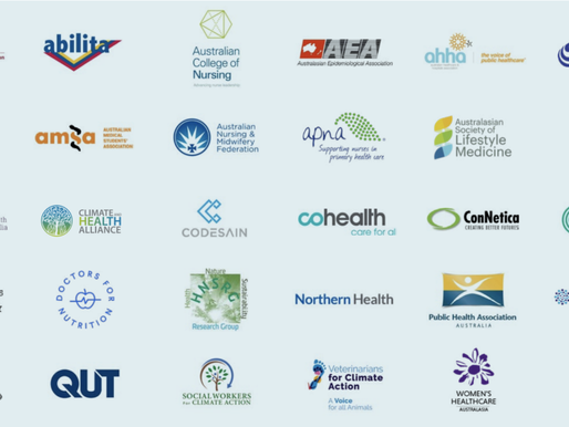 DFN joins health organisations' call for a healthy, regenerative and just future