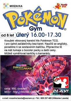 pokemon Gym 2020_21.jpg