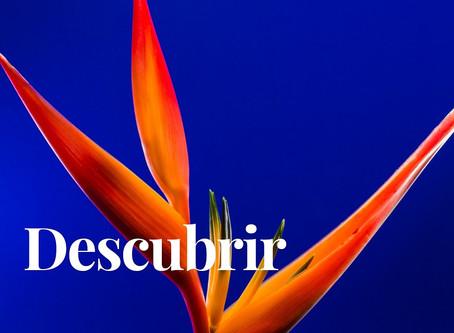 ACCIONES EN POSITIVO: