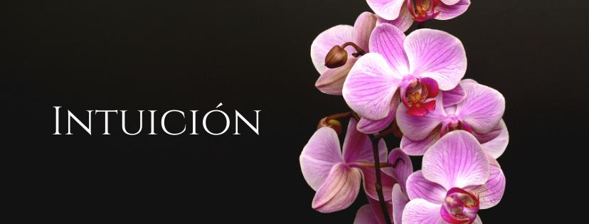 Feliz_Otoño_Felicitación_Portada_de_Fa