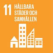 11 hållbara städer.jpg