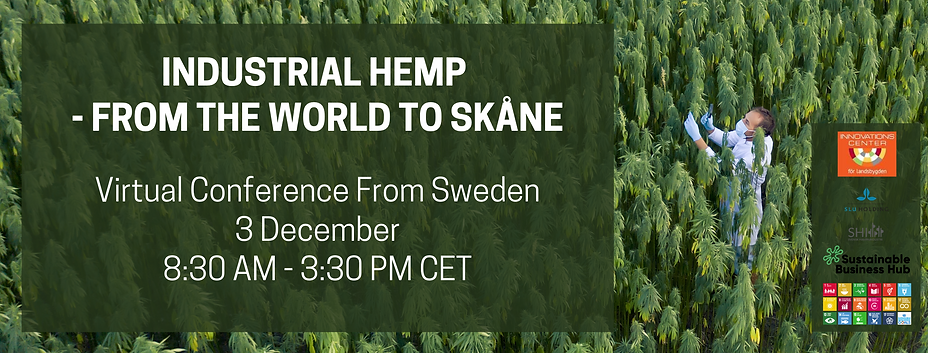 Industrial hemp From the world to Sweden's Skåne