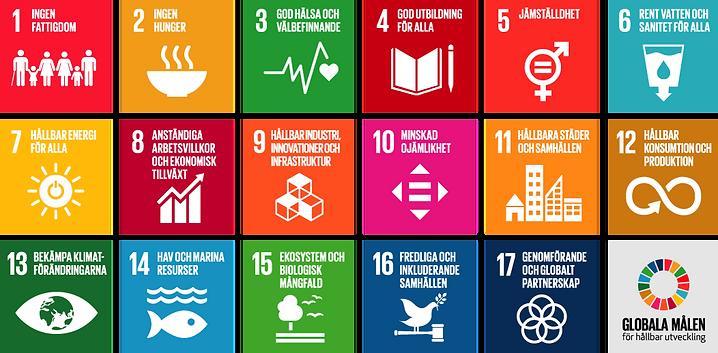 Använd Agenda 2030 för ökad affärsnytta