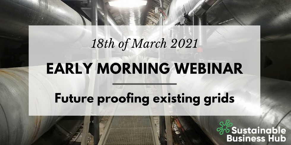 Webinar on Future proofing existing grids