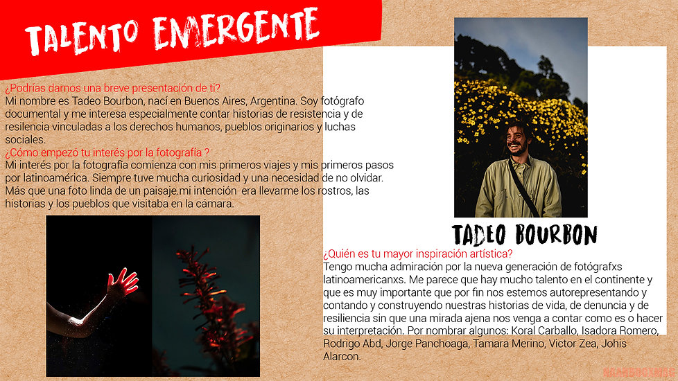 Tadeo 1.jpg