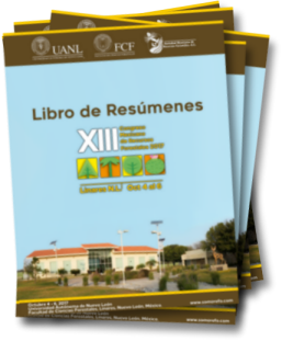 librosderesumenesicono.png