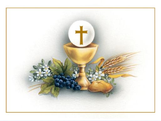 Confesiones y práctica para primeras comuniones / Confessions and practice for First Communions