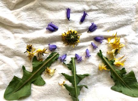 Make Your Own: Wildflower and Leaf Mandala!