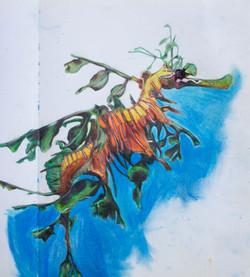 'Leafy Water Dragon' - 2003