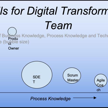 Who all makes a 'Digital Transformation Team' ?