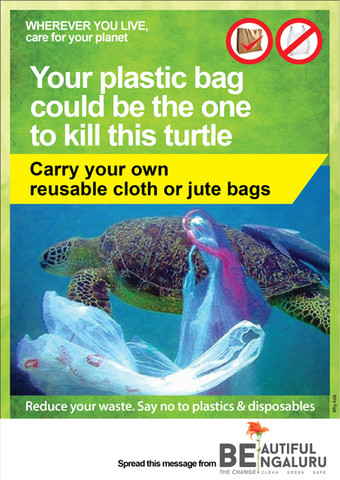 RW5b-Plastic-bag-turtle-4.02c-01.jpg