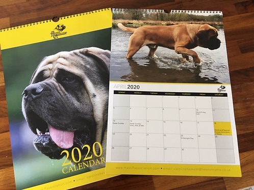 Large A3 Calendar 2020
