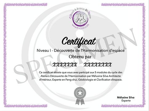 Certificat Formation M-COSI N1 Specimen.