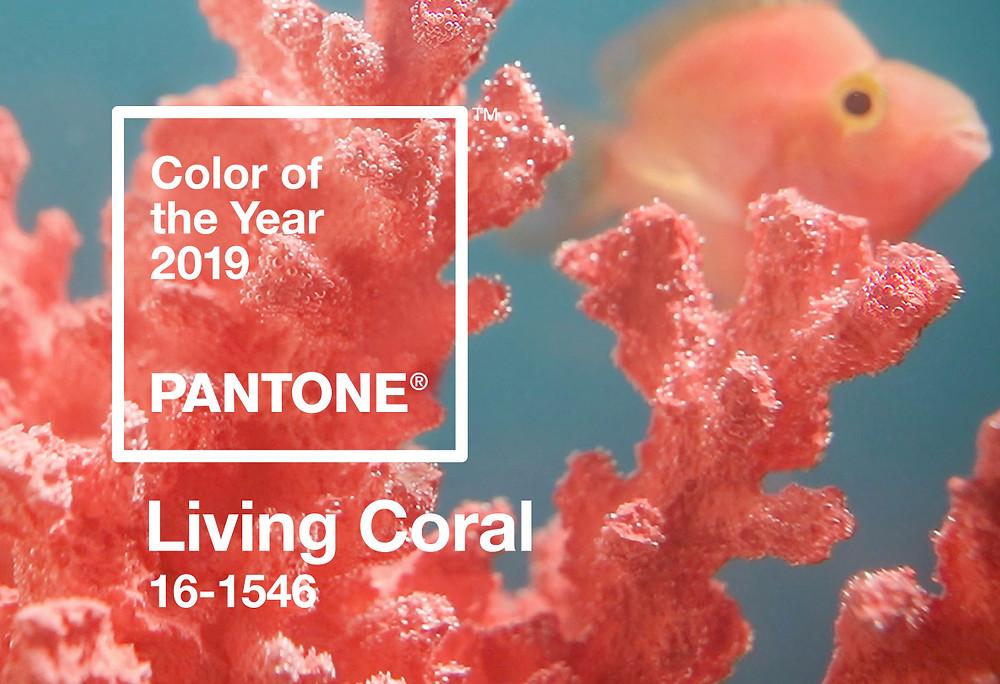 קורל חי - צבע השנה ל 2019 של חברת פנטון