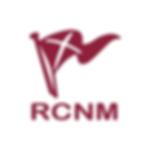 Logo RCNM San Juan.png