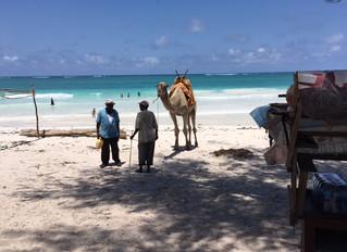 Philip's Kenya Blog - Saturday (Last Day)