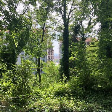 Préservation du Jardin des Pendarts, 1er arr. de Lyon (69)