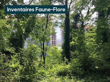 La ville de Lyon a fait appel à Ubiquiste pour mener des d'inventaires au Jardin des Pendarts !