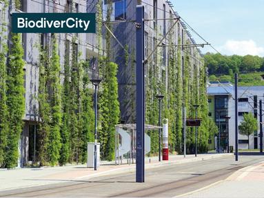 Ubiquiste est désormais accrédité par le CIBI pour accompagner votre labellisation BiodiverCity®