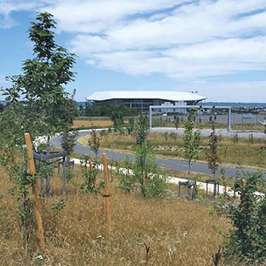 Aménagements écologiques du Grand Stade de Lyon, Décines-Charpieu (69)