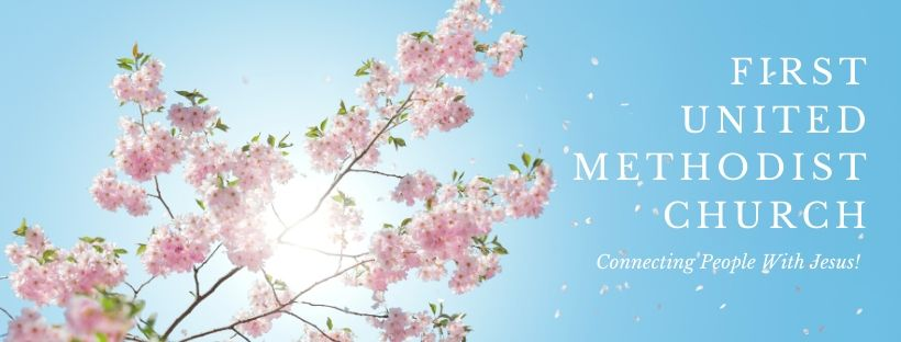 Cherry Blossom Facebook Cover