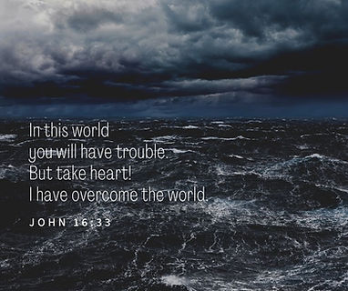 In this world you will have trouble. But take heart! I have overcome the world..jpg