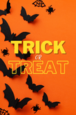 Trick of Treat Notebook