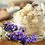 Thumbnail: CBD Pain Salve - Lavender