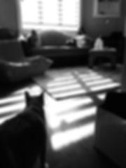 IMG_20171119_122539_EXP0.jpg