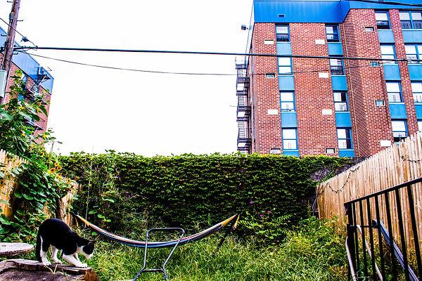 Backyard Landscape PICS (10 of 16).jpg