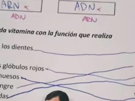 Maestra se hace viral por calificar con memes a sus estudiantes
