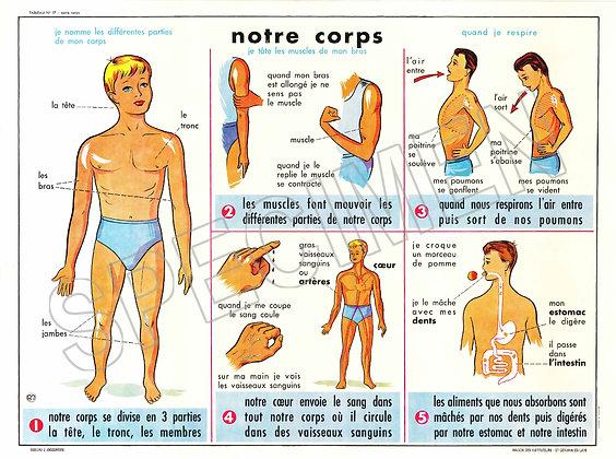 NOTRE CORPS