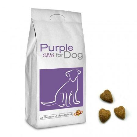 purple-for-dog-croquettes-de-petites-dim