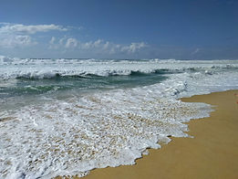 Reconnexion nature océan Contis