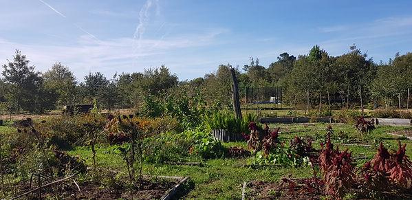 Jeûne et Jardin Terre Happy