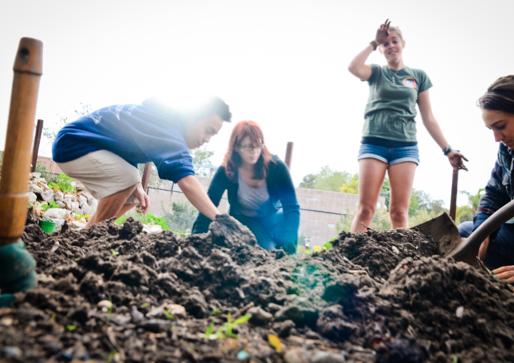 Edible Campus Program
