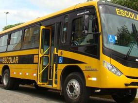 Passageira de ônibus que teve vértebra quebrada dentro do veículo será indenizada