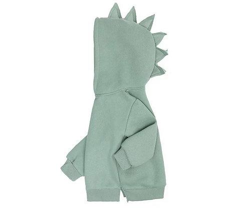 Mint Dinosaur Hoodie