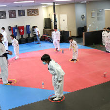 Beginner Taekwondo