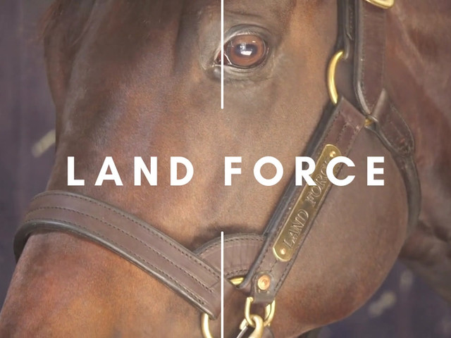 LAND FORCE