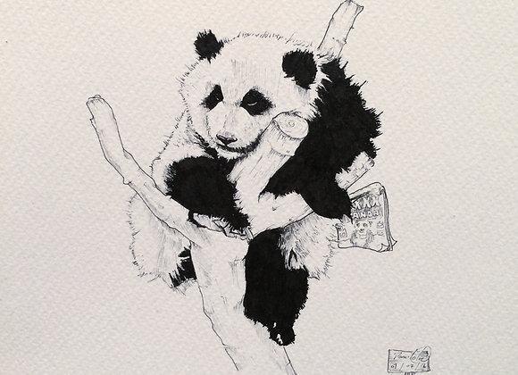 Panda reads too
