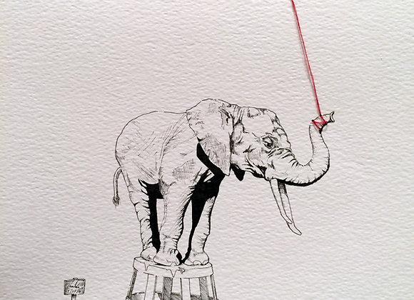 Elephant Vs Mouse