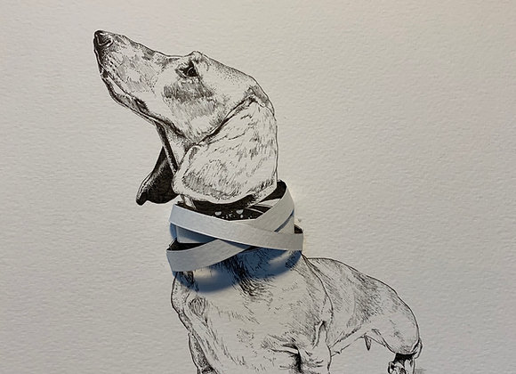 Deconstructed dachshund