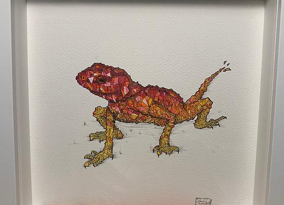 Lizard geometics