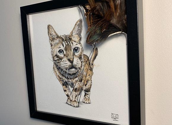 46.Cat reveals feathers