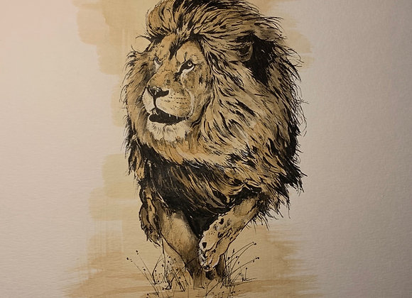 47.The king, coffee lion